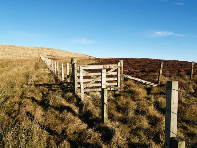 Gate and fence junction, Sundhope Height.