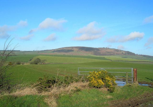 Towards Mochrum Hill