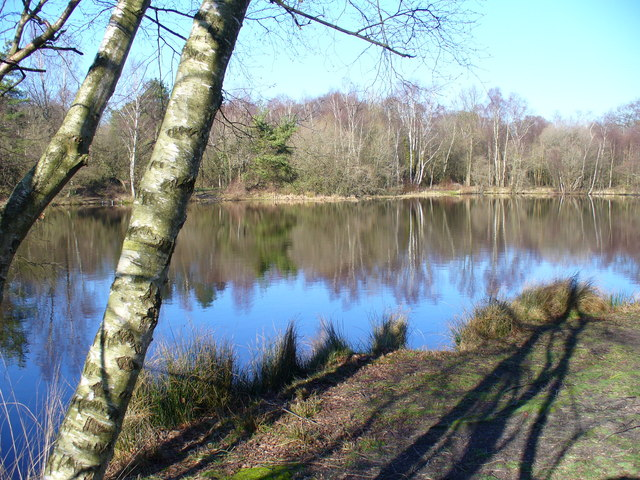 Shortheath Pond, Oakhanger