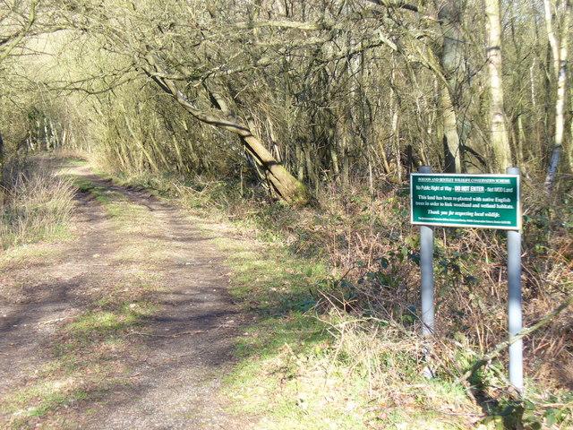 Dismantled Railway Line, Bordon