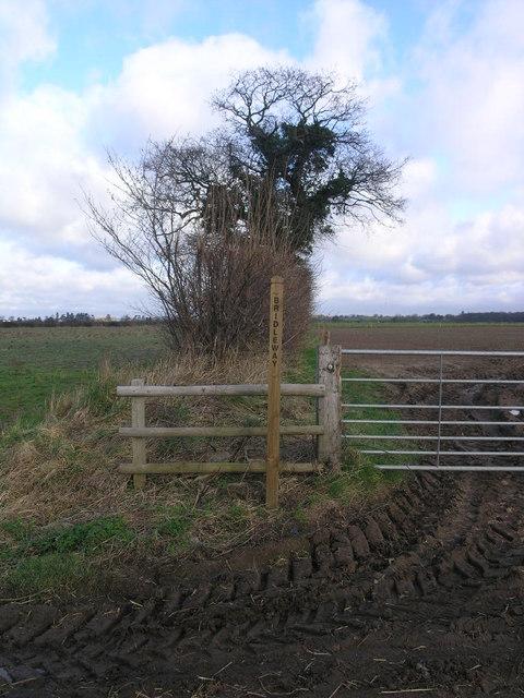 Which Way Bridleway