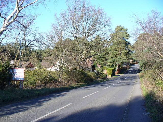 Hogmoor Road, Bordon