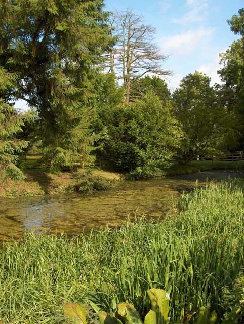 Pond at Chantmarle Manor