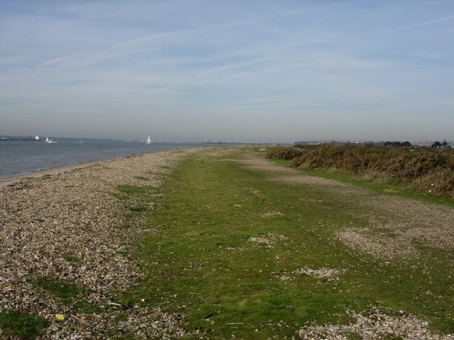Foreshore and Gorse