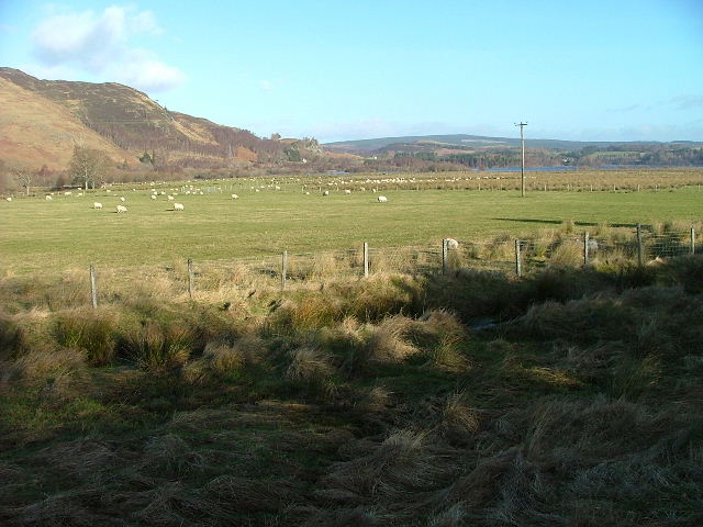Pasture Land East of Kinloch Rannoch