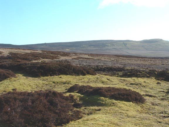 Askrigg Common North
