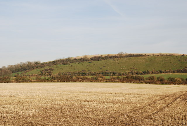 Downland and Barrow Hill
