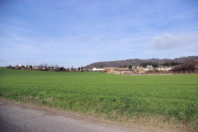 View towards Burham