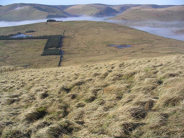 Strait Knowes on Arkleton Hill