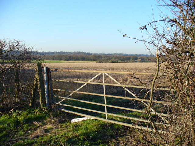 Farmland West of Oakhanger