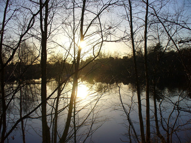 Late Afternoon on Shortheath Pond