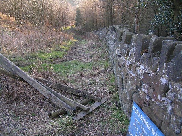 The bridleway near Randy Mere
