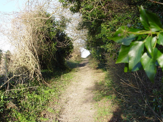 Bridleway from Gorcombe Farm to Manor Farm
