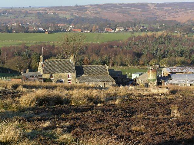 Brow House Farm