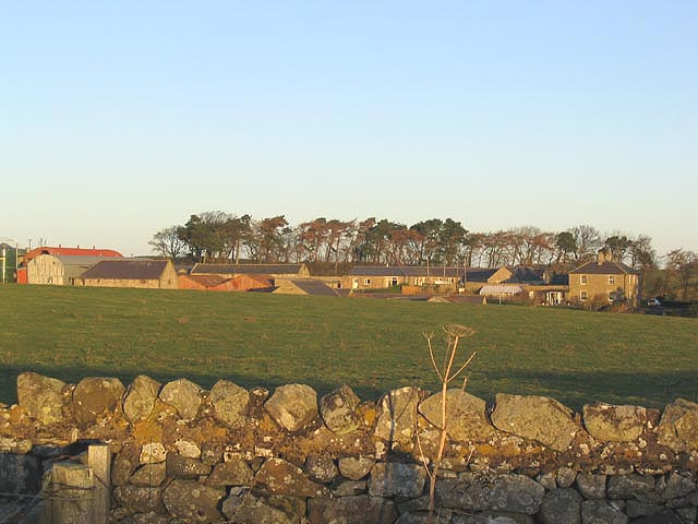 Belford Mains Farm