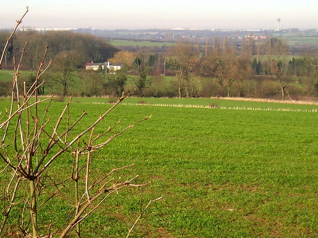 Rolling pasture off Dry Pot Lane near Long Whatton