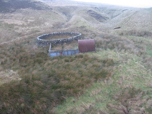 Sheepfold below Sclanor Hill