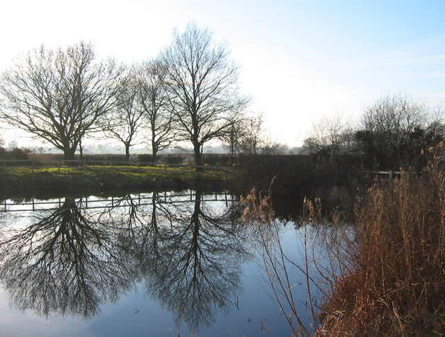 Reflections in mere at Bradley Common