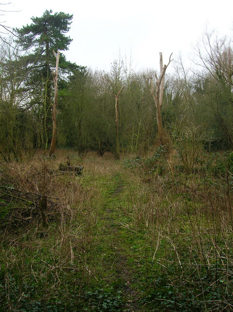 Railway Land Nature Reserve