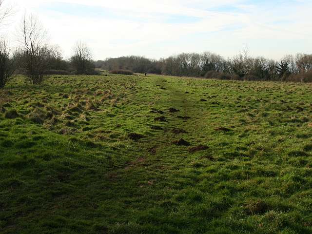 Bannerdown Common