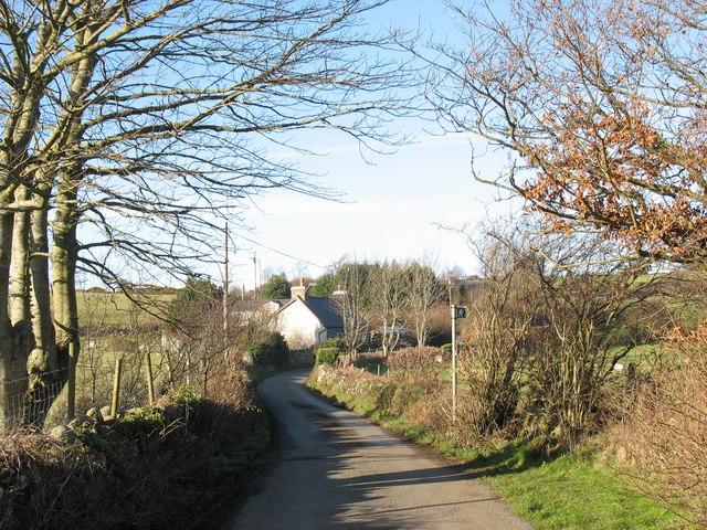 Lon Glasgoed - a country lane