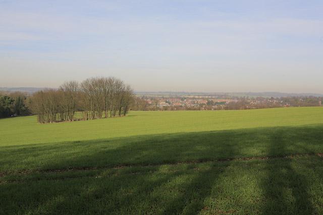 Looking across fields from Wayfarer's Walk south of Alresford