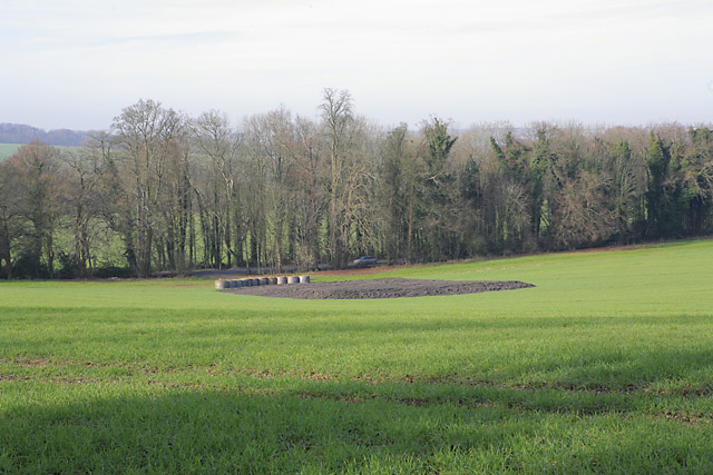 Agricultural activity seen from Wayfarer's Walk south of Alresford