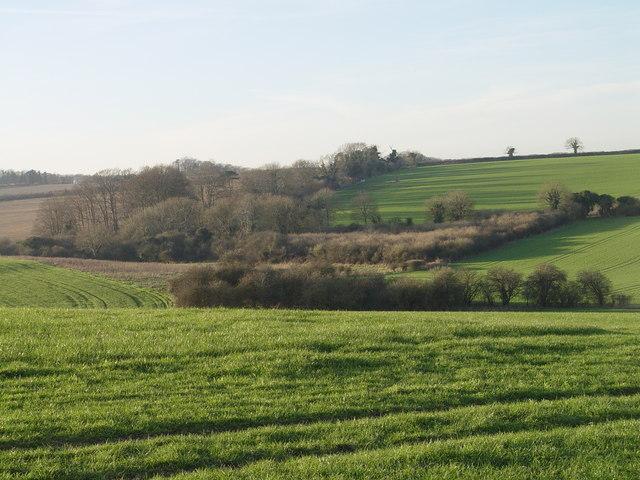 View towards Holly Brake