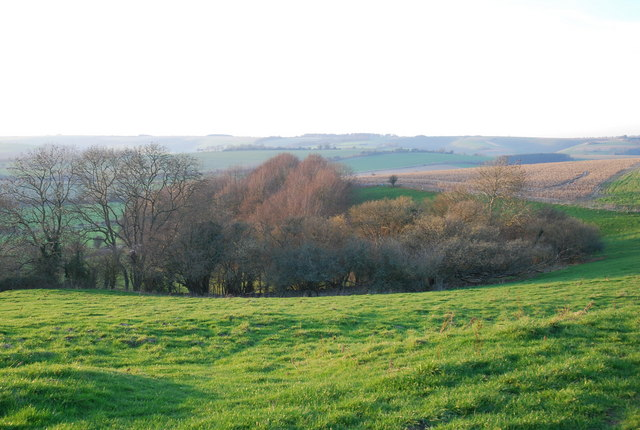 Woods and downs above Ebbesbourne Wake