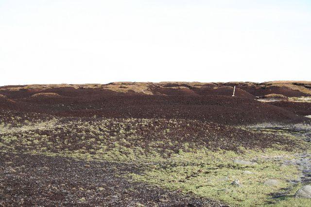 Denuded peat, Bleaklow
