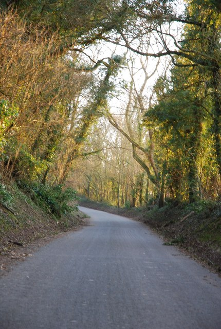 The road up from Ebbesbourne Wake