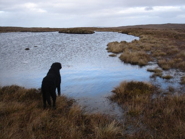 Contemplating Loch nan Losgann