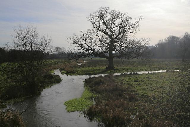 River Itchen south of road near Cheriton Mill