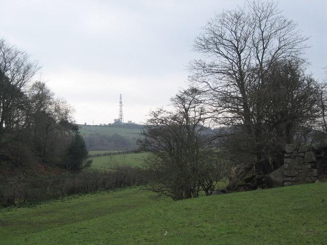 Ruin and Mast