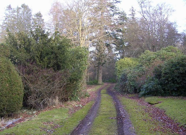 Driveway to Burnside House