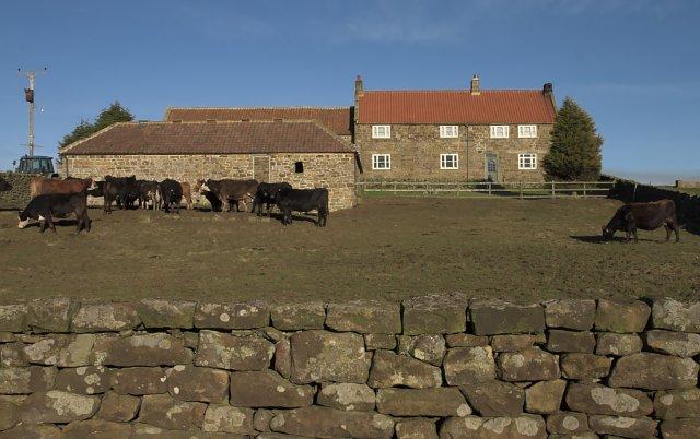 Percy Rigg Farm