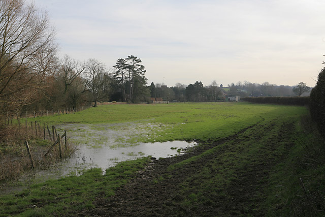 Looking across water meadows to Cheriton from Wayfarer's Walk