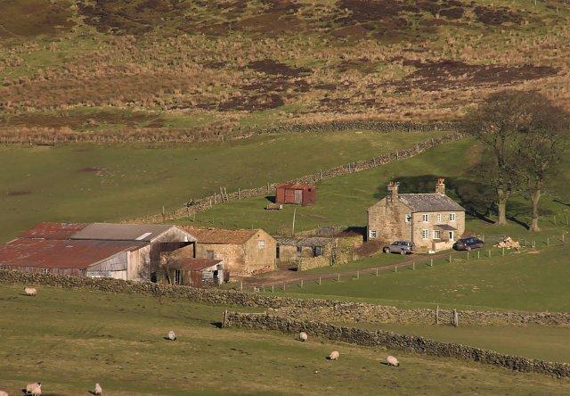 Fields near Sleddale