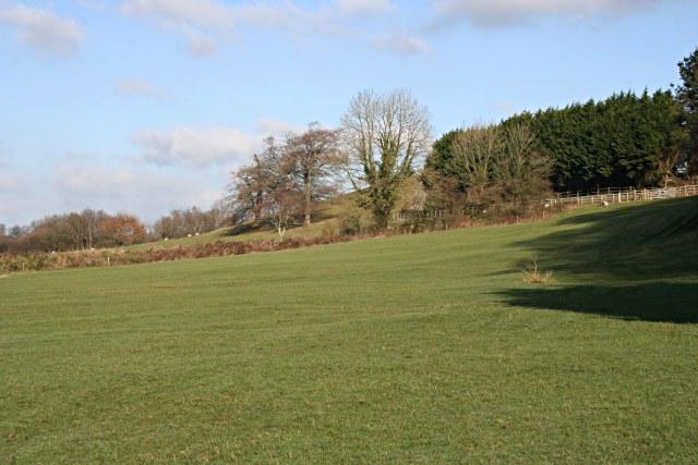 Pasture near Welltown Farm