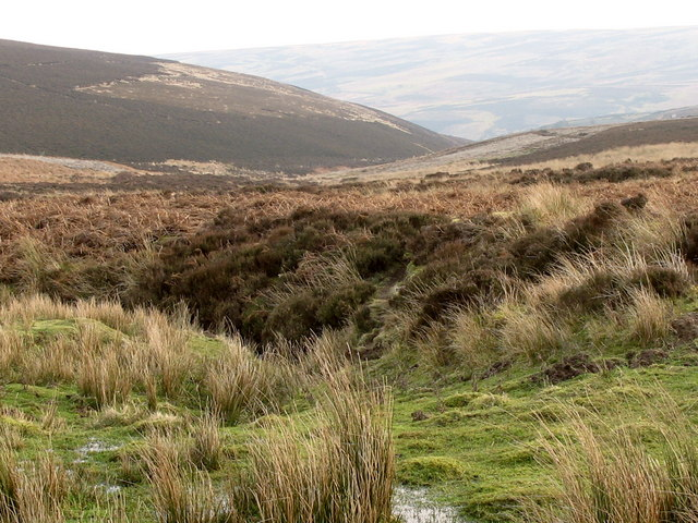 High Moorland, South of Killpallet