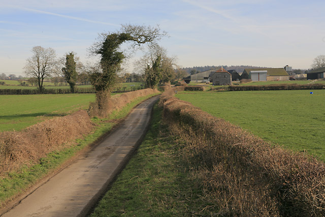 North End Lane approaching Middle Farm