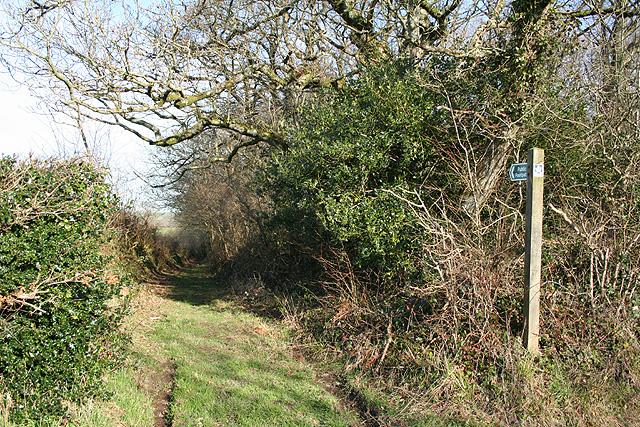 Broadwoodkelly: public footpath