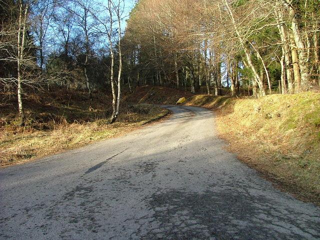 Driveway to Drumour Lodge