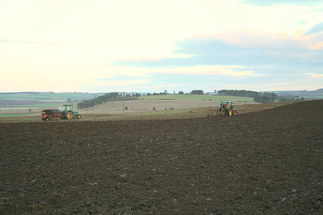 Ploughing the fields and scattering..........