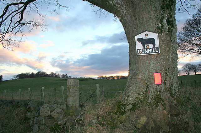 Turn off for Gunhill Farm.