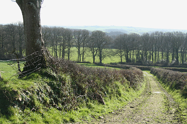Broadwoodkelly: towards Lower Moor