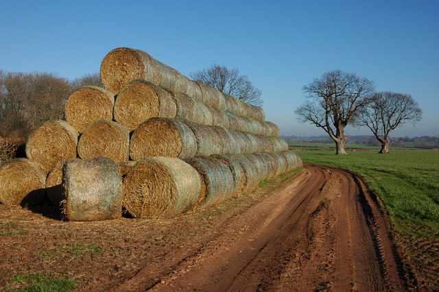 Straw bales near Alton Cross