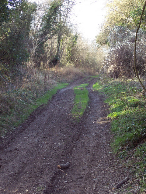 Part of the Monarch Way near Baverstock