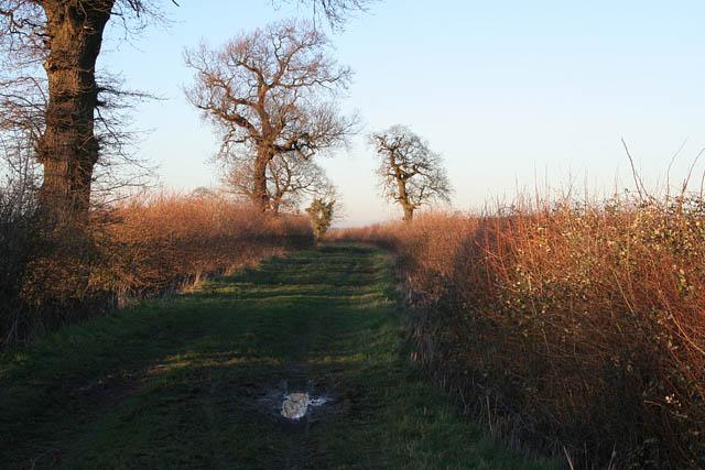 Green Lane near Pickworth