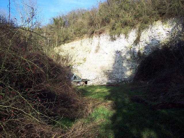 Disused Chalk Pit near Baverstock